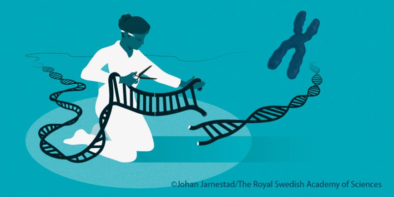 CRISPR/Cas9 genetic scissors wins the nobel prize